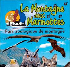 Montagne-marmottes